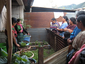 Demonstration Garden in Santa Clara la Laguna