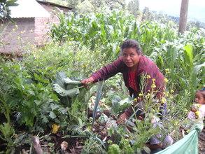 Isabela Harvesting Some Vegetables for Dinner.