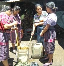 Making Natural Fertilizer
