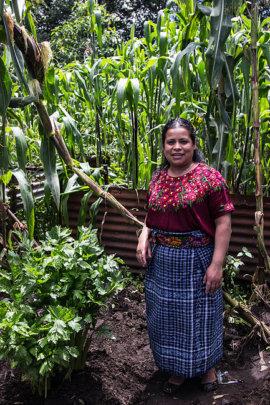 Candelaria Sut Canu, Project Coordinator