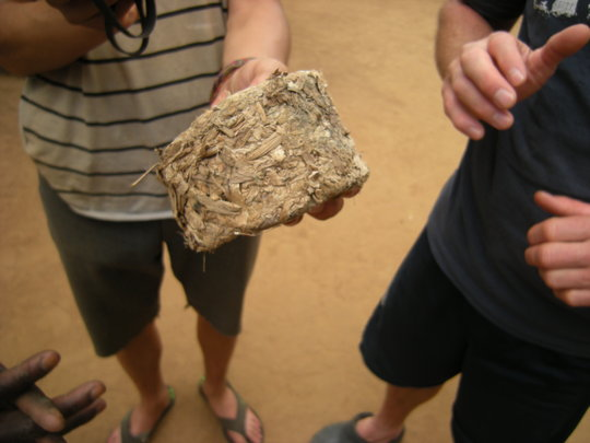 Water Hyacinth Briquette