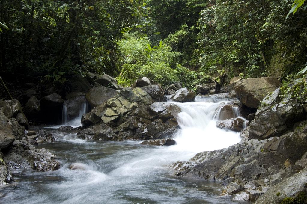 Scenic part of a river that runs through Buayan