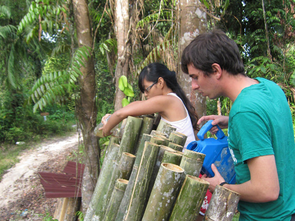 Treating bamboo
