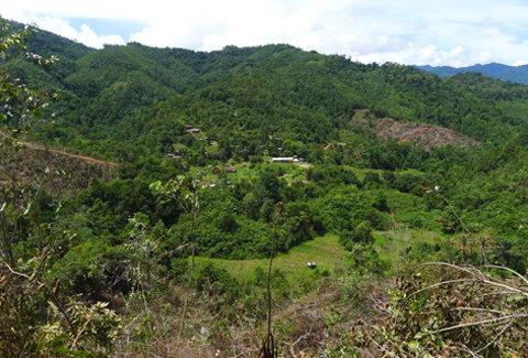 View of the Crocker Range, Sabah