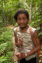 A grandma going to collect plants from the forest