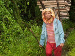 Help Communities in Borneo Protect their Heritage