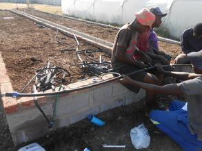 Ngqabutho teaches how to plumb drip irrigation