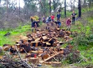 Wood Chop Weekend