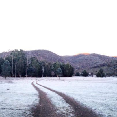A frosty front paddock!