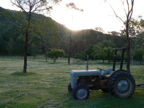 'Wozza' the tractor
