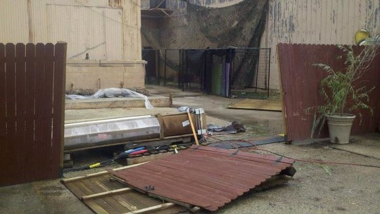 Fences and kennels smashed