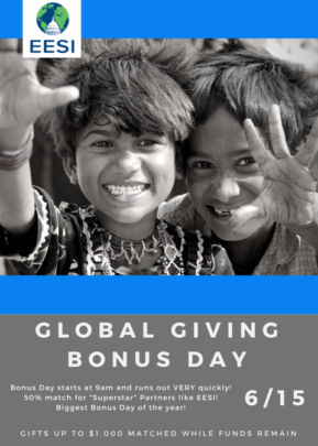 Promote a sustainable society by giving to EESI!