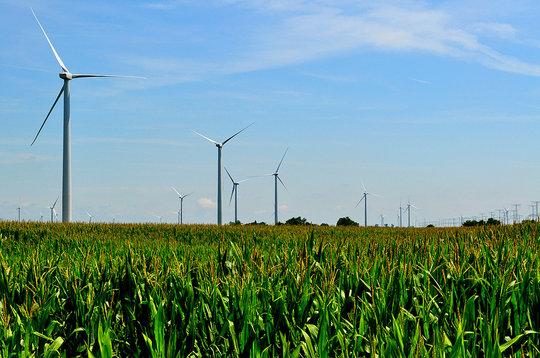 Illinois Wind Farm (CC courtesy Tom)