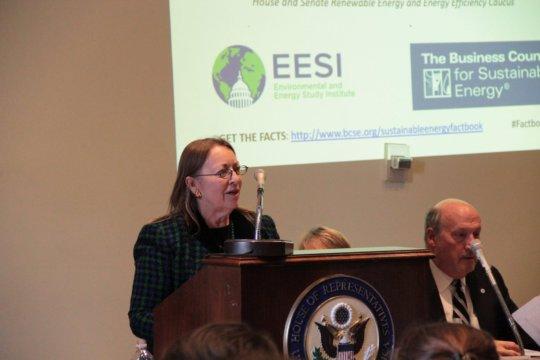 Director Carol Werner speaks at the briefing