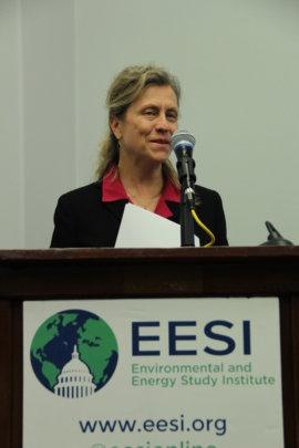 EESI's Ellen Vaughan opens the briefing