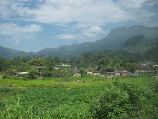 Hill Country Sri Lanka by Jenna Rose Robbins