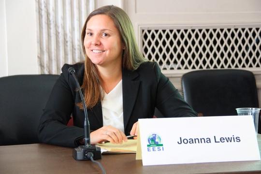 Joanna Lewis, Georgetown prof., at EESI briefing