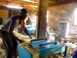 Fofana's employees at work
