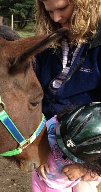 Bring Healing To Horses And Humans In Need