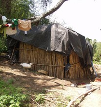 Shack that Lily and her 4 children used to live in