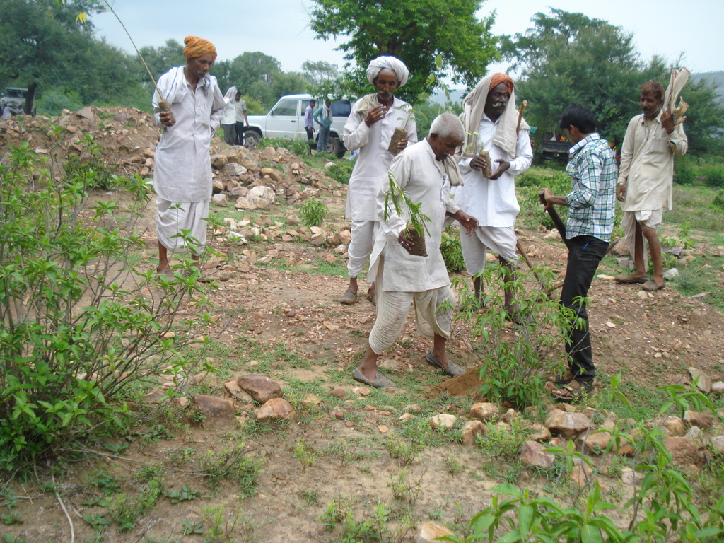 Community members planting trees on grazing lands