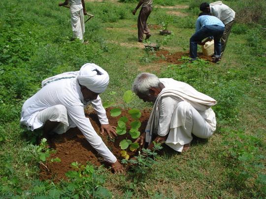 Community members planting trees at Oran