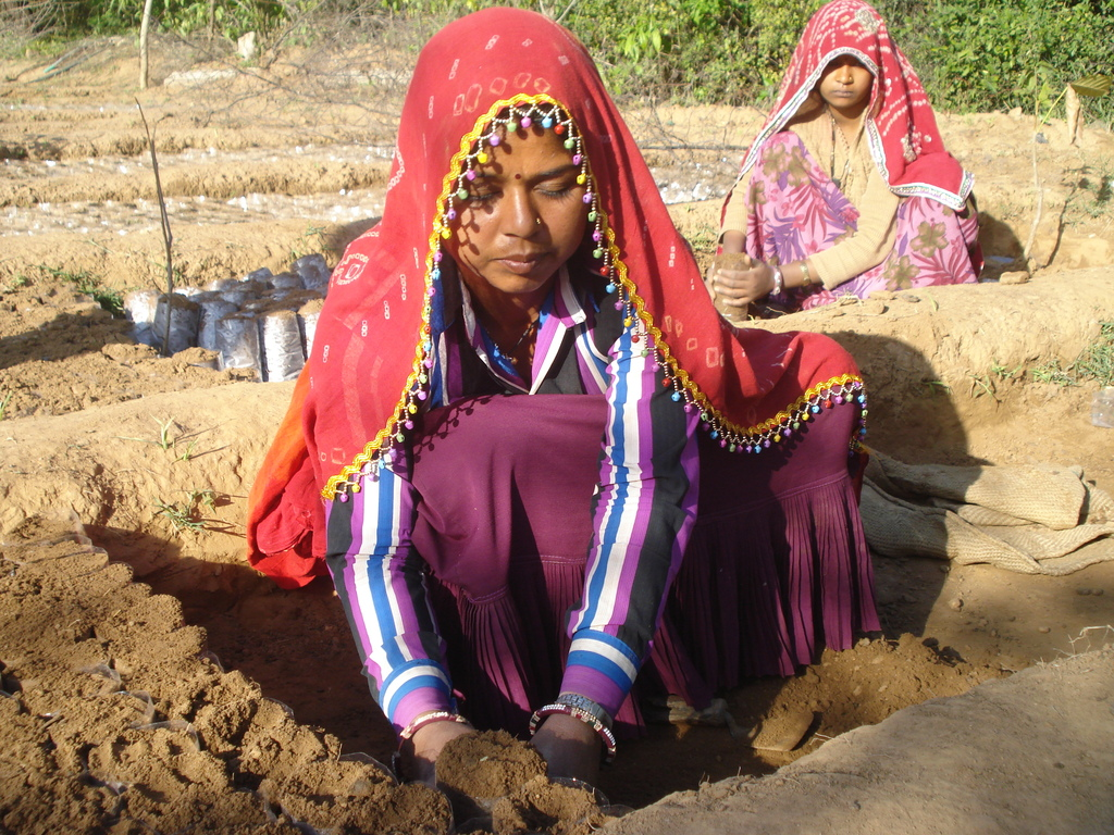 Tribal women raising tree saplings