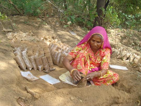 Preparation for growing medicinal plants