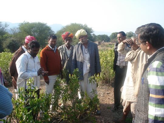 Training to pastorlasits on ethno – veterinary