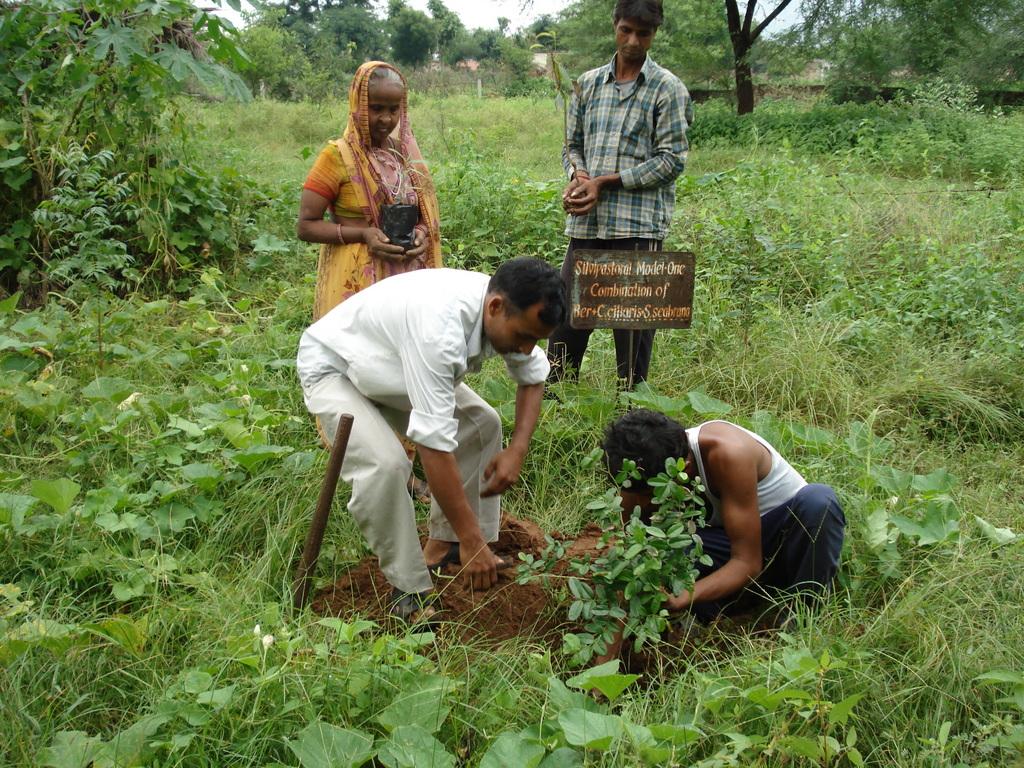 Planting fruit trees at KRAPAVIS oran