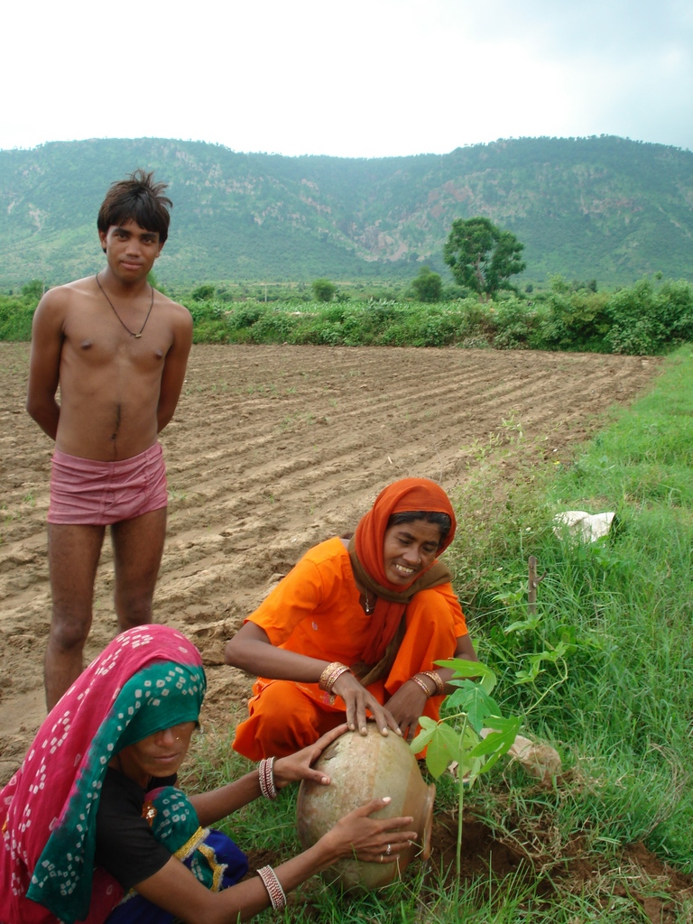 Community tree plantation, Meena ki Dhani village