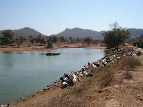 Orans protect watersheds in Dry Rajasthan