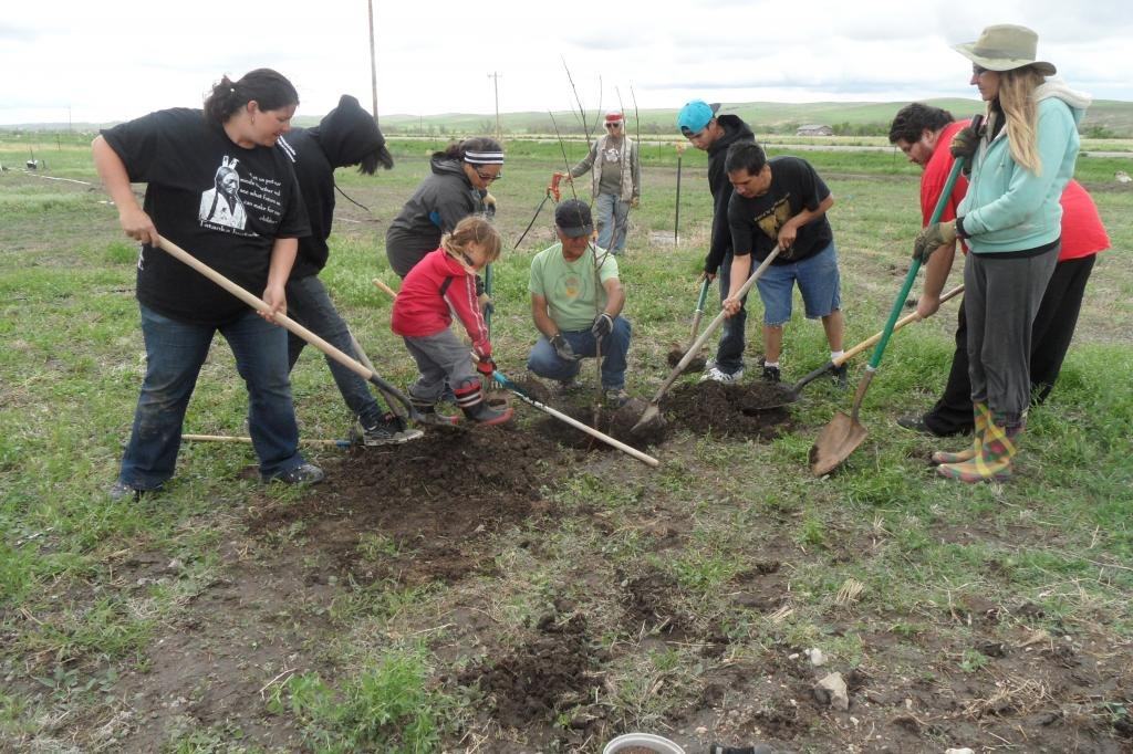 Planting orchard at Thunder Valley CDC