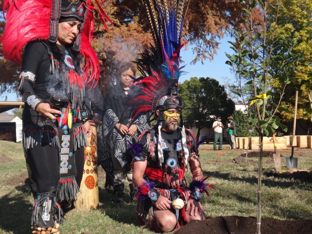 Trees for Tribes