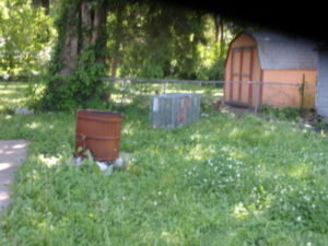 The shed they were hiding under