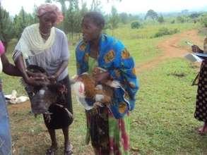 Mothers receive chicken for their children