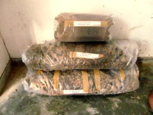The seized animal skins in police custody.