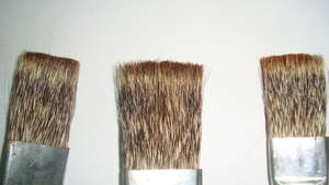 Mongoose hair brushes
