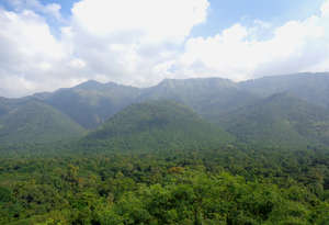 Meghamalai Wildlife Sanctuary