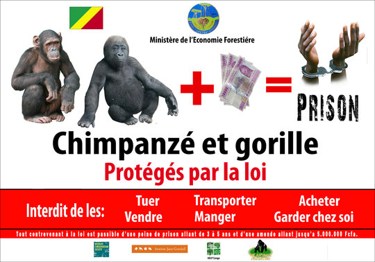 Tchimpounga Billboard in Congo