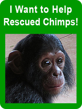 I want to help rescue chimps!