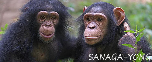 Kanoa and Anita - best friends