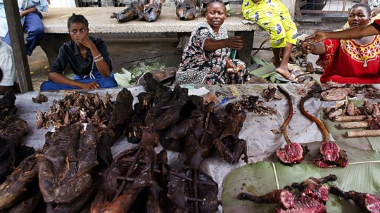 A bushmeat market in West Africa