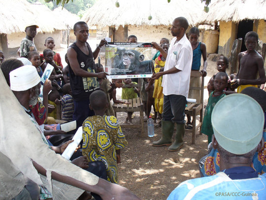 Community conservation awareness program, Guinea