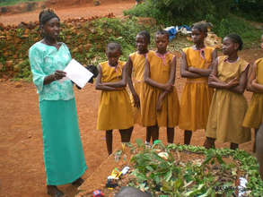 Conservation education in Sierra Leone