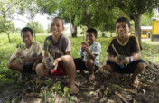 Intercultural Education for Indigenous Youth