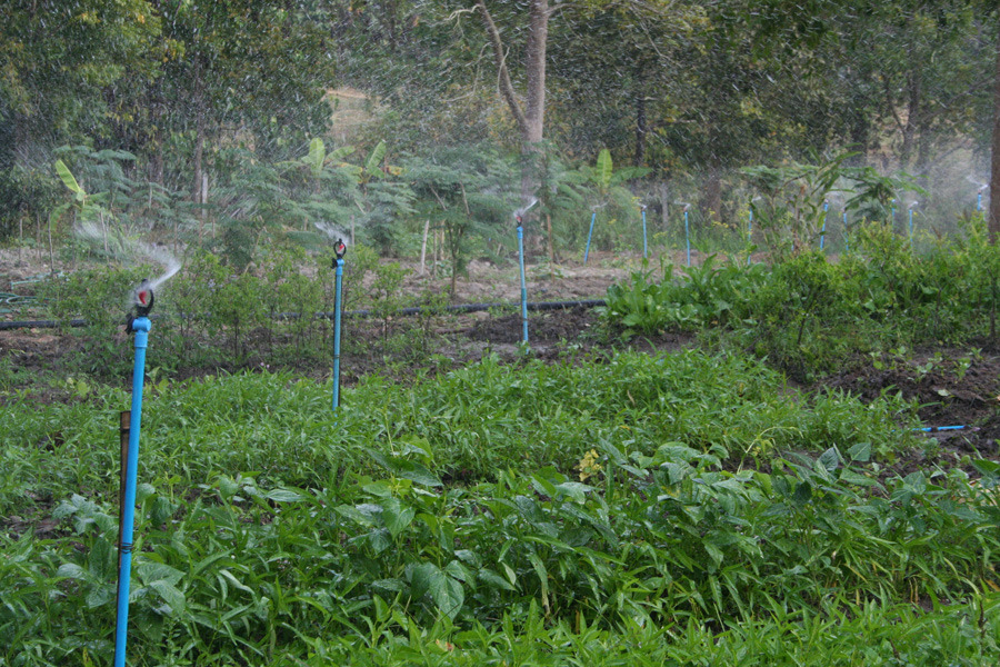 The new irrigation system in action
