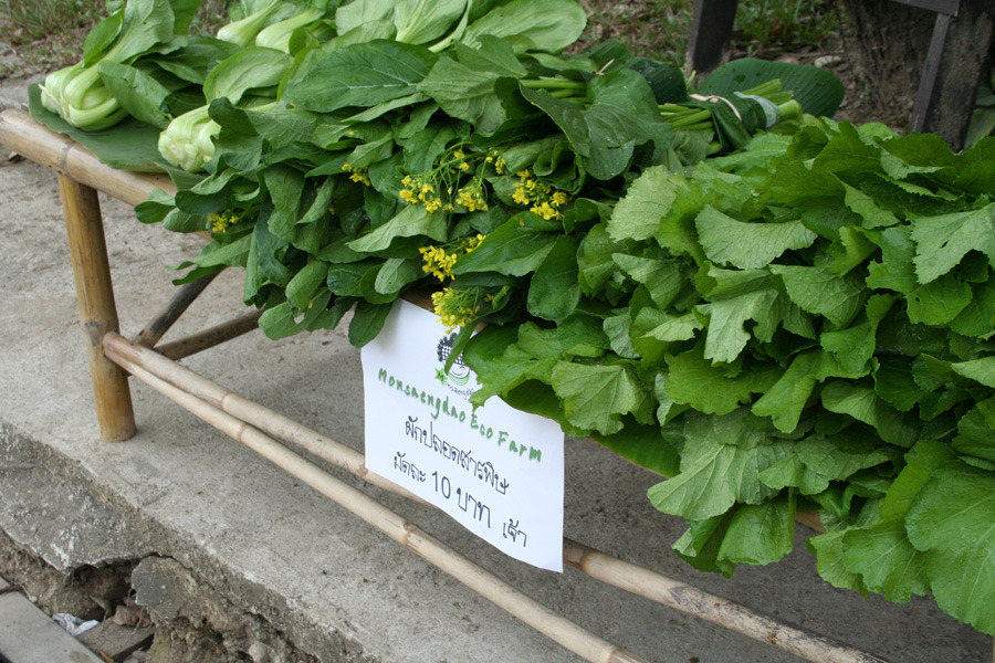 Monsaengdao organic greens