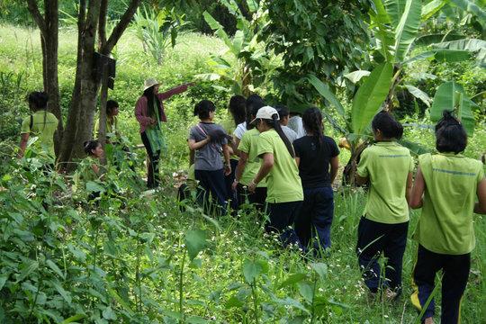 Monsaengdao's nature trail