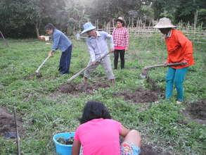 Prepare the soil for planting vegetables